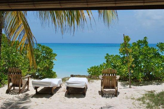 Denis Private Island Seychelles : Salle d'eau ouverte sur une petite cour privée, le top!