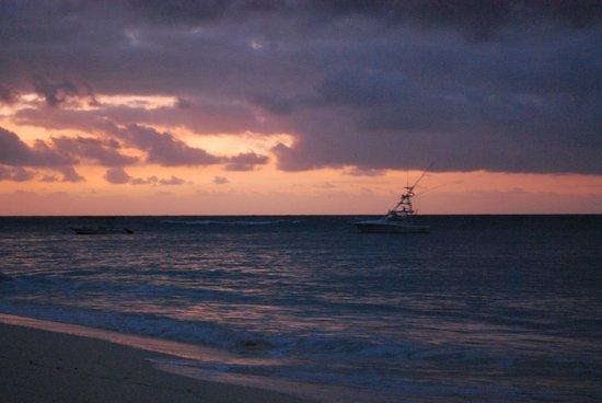 Denis Private Island Seychelles : Vue du cottage, petite plage privée