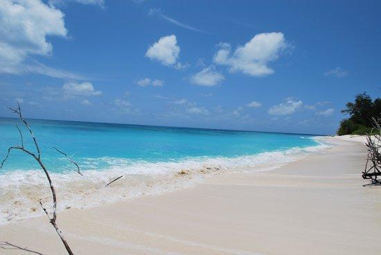 Denis Island, Seyşeller: Coucher du soleil