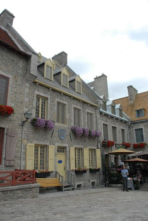 Place Royale : Flower in the window