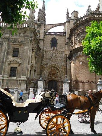 Barrio Santa Cruz : Bella arquitectura medieval.