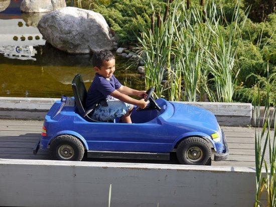 Dyreparken: Aktiviteter med bilkjøring for de små