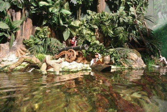 Grand Aquarium : 3