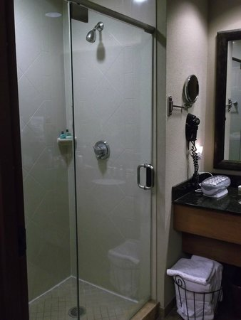The Inn at Christmas Place: Nice shower