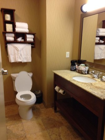 Hampton Inn & Suites Williston: Nice space in the bathroom.  Love the cuby for the towels and toilet paper.  Even more space und