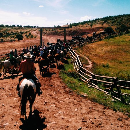 Black Mountain Ranch: Cattle Drive on Saturdays