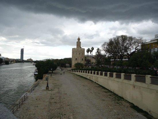 Torre del Oro : Torre desde el paseo costero.