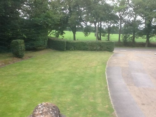 Nightless Copse : View from the bedroom window