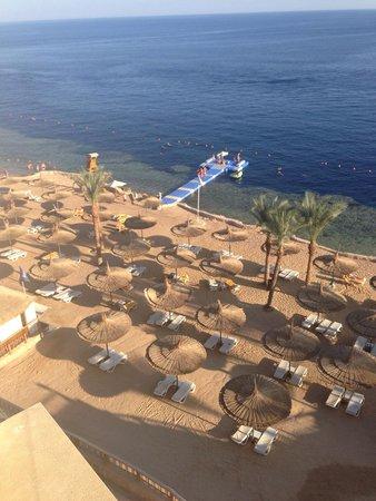 Reef Oasis Blue Bay Resort: Beach