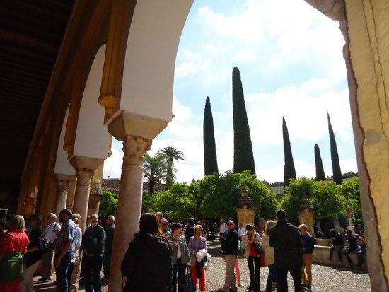 Cathédrale de Cordoue : Vista a los jardines.
