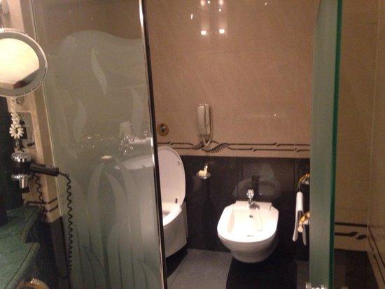 Grand Hyatt Dubai : Separate toilette room within the bathroom