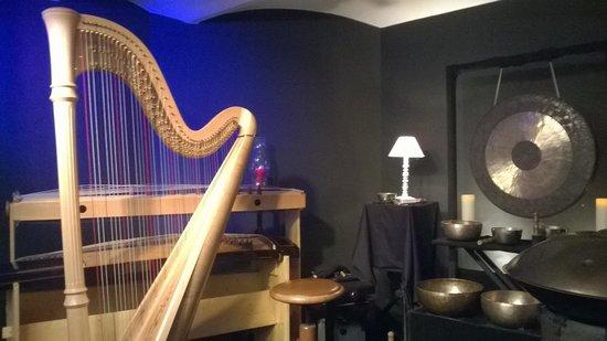 Luc Vanlaere Harpist : A few of his instruments