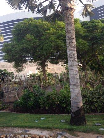 Grand Hyatt Dubai : Lovely landscape