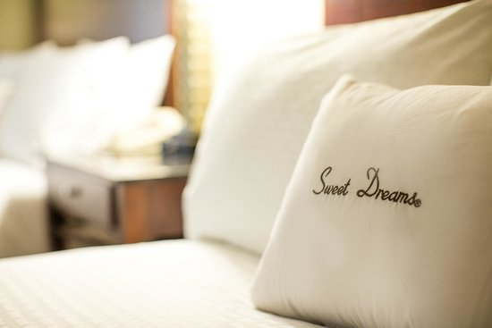 DoubleTree by Hilton Charlotte Airport : Sweet Dreams