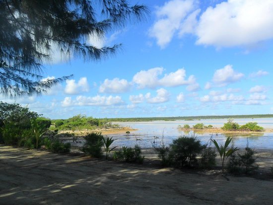 Kamalame Cay: Flats just behind Wild Dilly  Low Tide