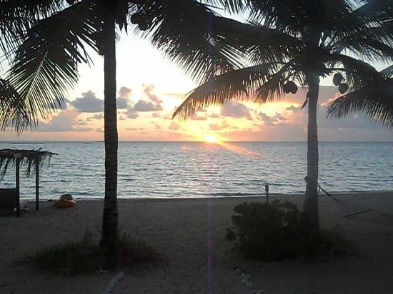 Kamalame Cay : Sunrise at  Wild Dilly