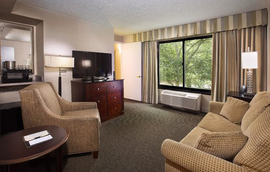 DoubleTree by Hilton Charlotte Airport: Living Room area of Suite