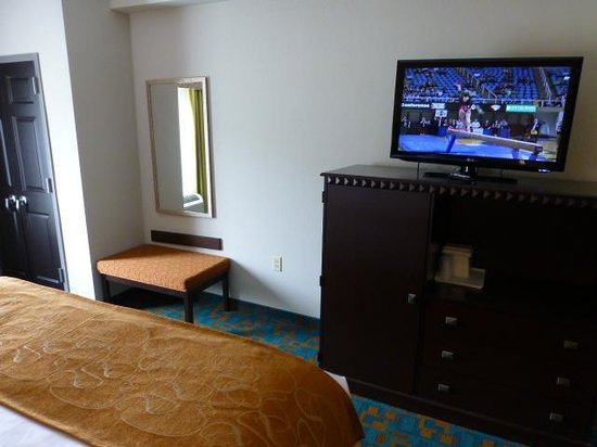 Comfort Suites Knoxville West-Farragut: TV