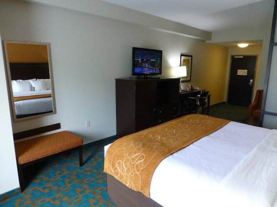 Comfort Suites Knoxville West-Farragut: King bed room view