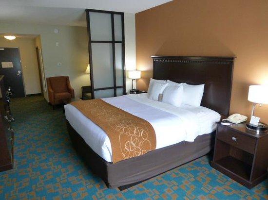 Comfort Suites Knoxville West-Farragut: King bed