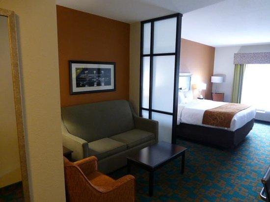 Comfort Suites Knoxville West-Farragut: Sofa