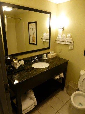 Comfort Suites Knoxville West-Farragut: Bath