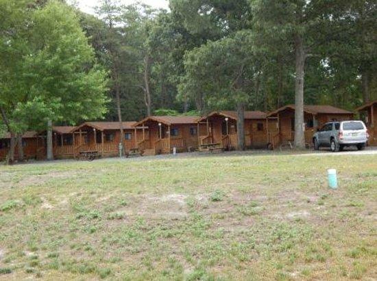 Ponderosa Campground: Typical cabin setup