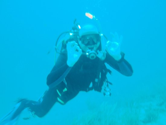 ScubaTech Grenada: Shark reef, Grenada