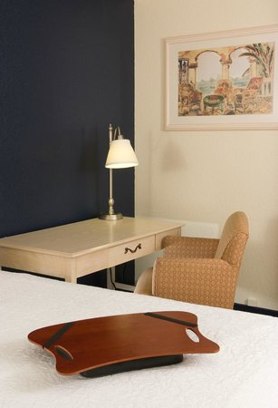 Hampton Inn Orlando-S. Of Universal Studios : Guestroom work desk