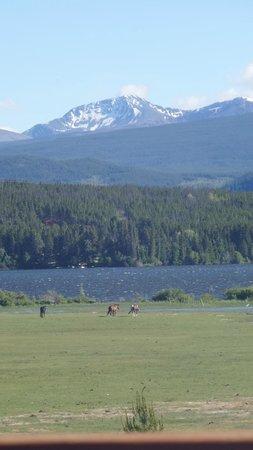 Terra Nostra Guest Ranch: ohne Worte