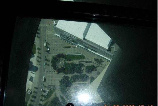 CN Tower - top floor! scary!