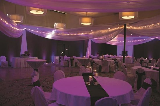 Ramada Plaza Minneapolis: Itasca Ballroom Wedding