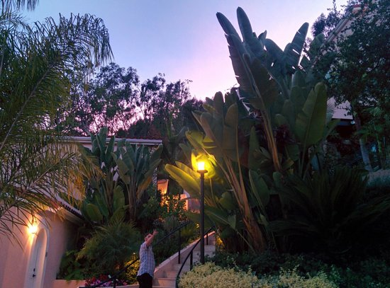 Hotel Bel-Air: Stunning hotel grounds