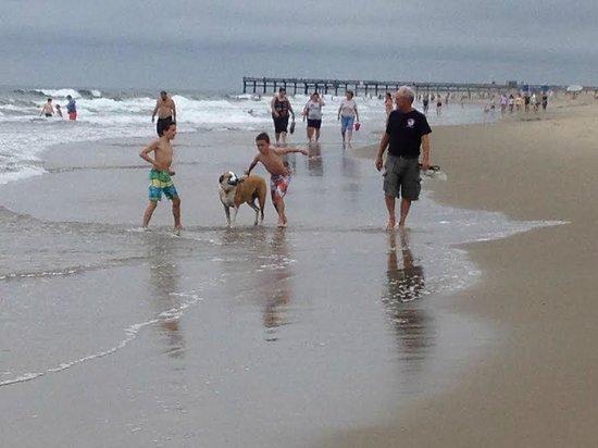 Sandbridge Beach: nice beach to play on