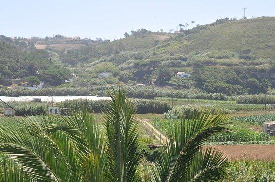 Helios Ericeira : The view
