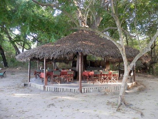 Selous Mbega Camp: Restaurant im Hauptcamp