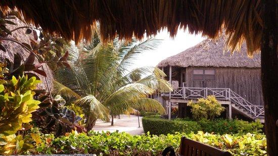 Captain Morgan's Retreat: view of some villas