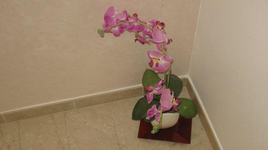Hotel Stresa: Орхидея на лестничной площадке