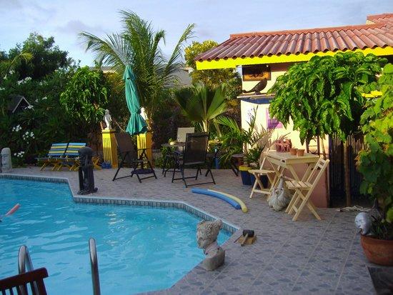 Littledavid Guesthouse : Pool Area