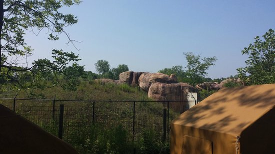 Fort Wayne Children's Zoo: Above where the lions are...