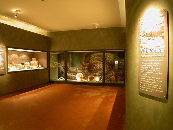 Risultato immagini per museo archeologico del finale