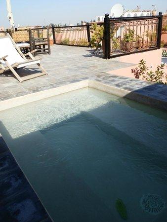 Riad Danka: le petit bassin