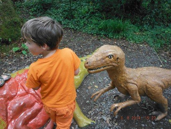 The Dinosaur Park: DONT FEED THE DINOS