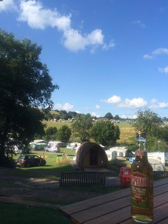Whitehill Country Park: Beer and sun. Perfect weekend away in the pod.