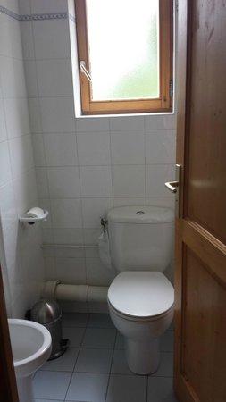 Hotel L'Oustalet : Toilet room
