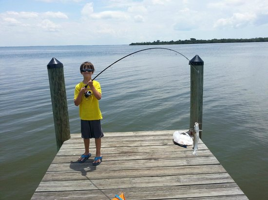 Sanibel Harbour Marriott Resort & Spa: Son catches his first fish