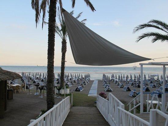 Lloyd's Baia Hotel: La spiaggia attrezzata