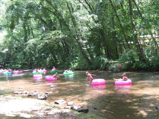 Riverbend Motel & Cabins: the TUBERS enjoying themselves on the river just outside our room