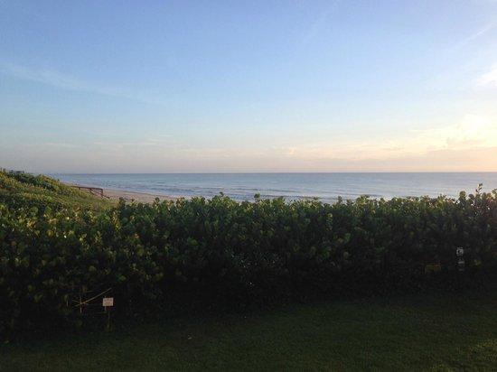 Paradise Beach Club: balcony view