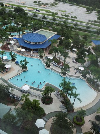 Hilton Orlando: Pool